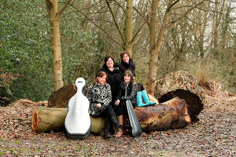 Vertavo String Quartet